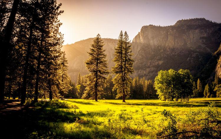 Ambiente de montanha preservado - ODS 15  Vida Terrestre