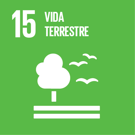 Objetivos Desenvolvimento Sustentável ONU -15 - Vida Terrestre