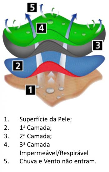 3a Camada_